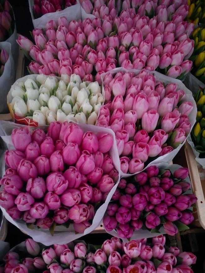 Blumenmarkt Salzburg
