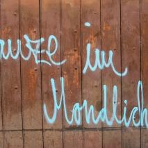Heidelberger Mondlicht