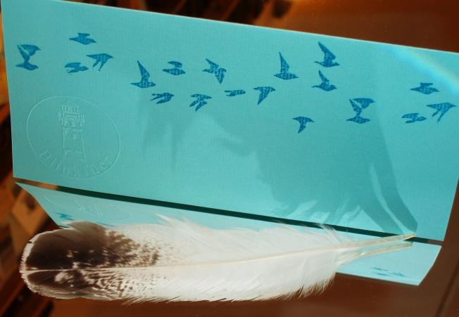 Vogelzug