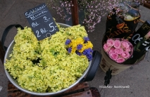 Schüssel-Blumen